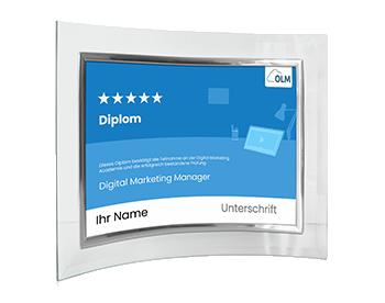 Digital Marketing Manager Diplom